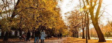 Perché (e come) cercare lavoro in autunno